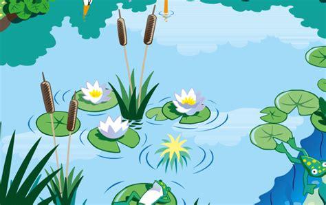 Pflanzen Am Teich 2605 by Pflanzen Am Teich Feuchtbiotope Universit T Ulm Teich
