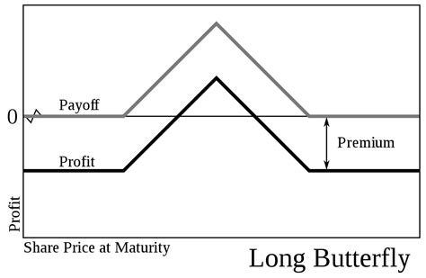 butterfly spread payoff diagram butterfly options