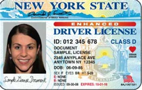 Document Number On Nys Drivers License