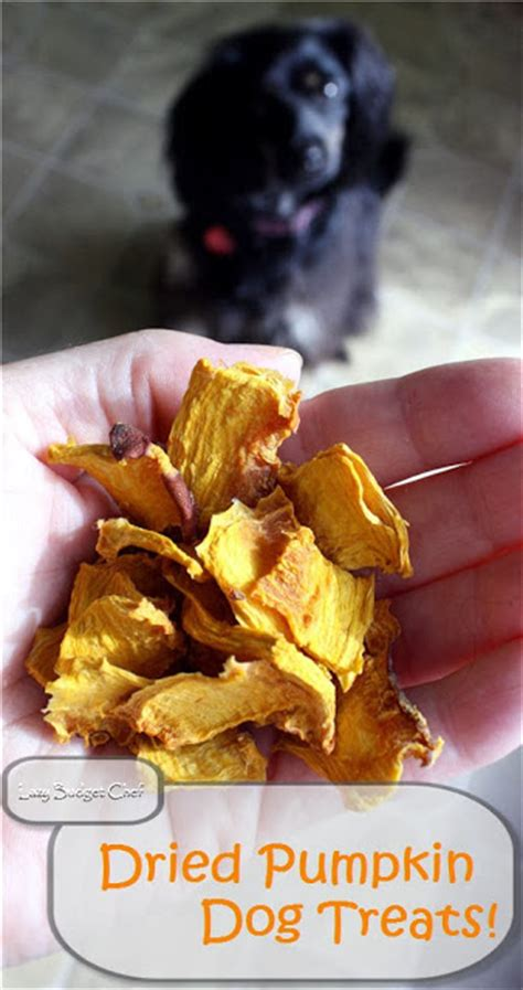 is pineapple bad for dogs lazy budget chef how to make dried pumpkin treats
