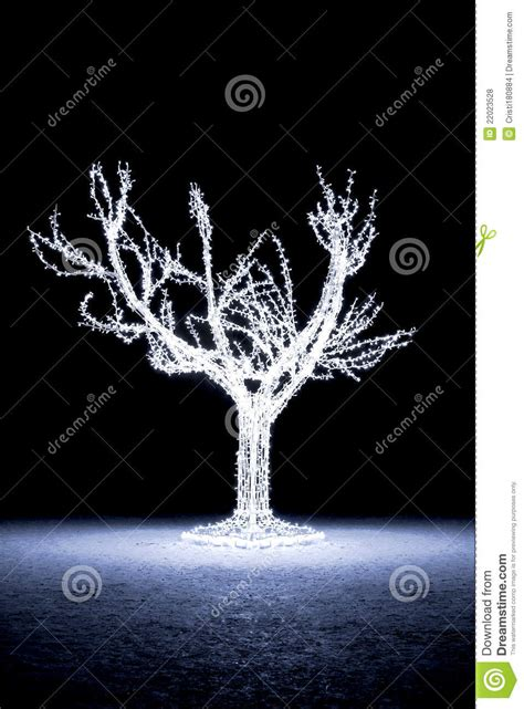 electric tree lights electric lights tree royalty free stock photos image