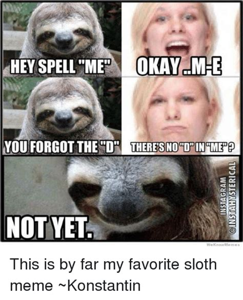 Spell Me Meme - funny sloth memes of 2017 on sizzle slothness