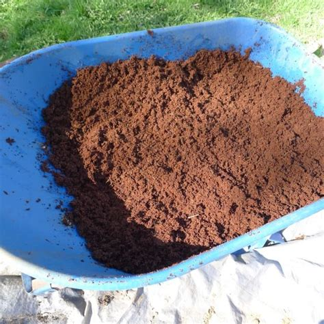 using peat moss in vegetable garden 17 best images about lawn and garden on
