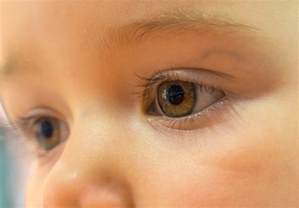 when is baby s eye color permanent bebeğin g 246 z rengi ne zaman değişir agumama