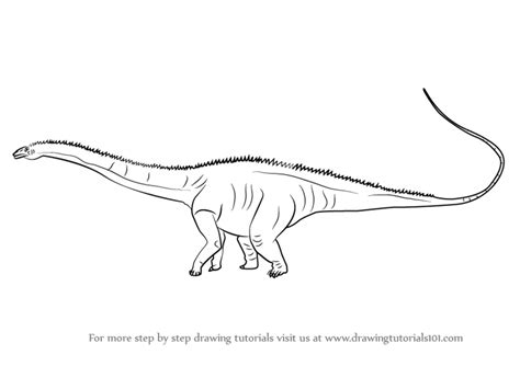 Learn How to Draw a Diplodocus (Dinosaurs) Step by Step