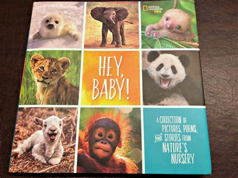 hey baby a collection of pictures poems and stories from nature s nursery national geographic books book review hey baby a collection of pictures poems