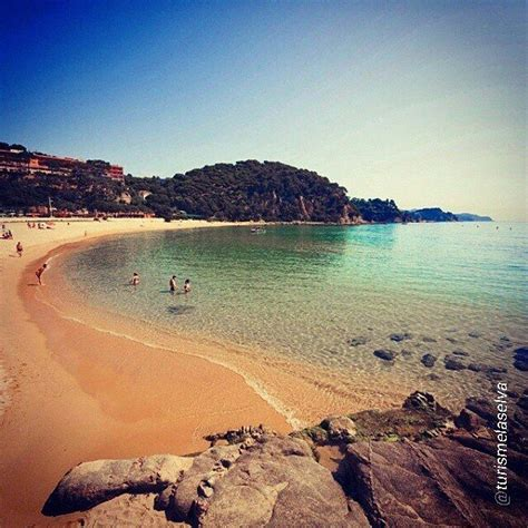 Corpus Delectable 17 best images about catalu 209 a spain on mars