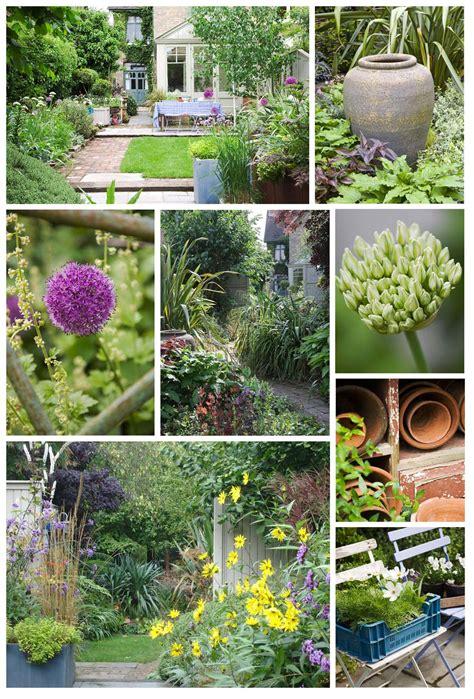 design my backyard helen riches garden design and writing my garden