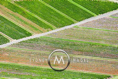 Crop Abstrac sydney aerial photography crops abstract
