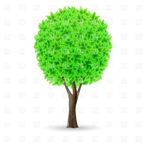 Christmas Plant Decoration Green Tree On White Background Organic Eco Symbol Royalty