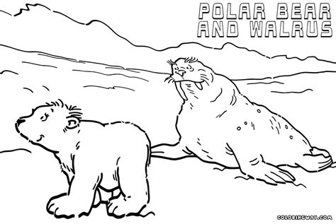 polar coloring pages polar coloring pages sketch coloring page