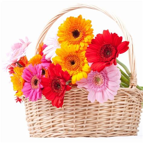 Best Flower Delivery by Best Flower Delivery Work Wallpaper