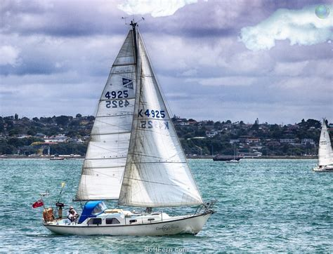 tug boat auckland harbour auckland anniversary day regatta tugboat race 2016 part