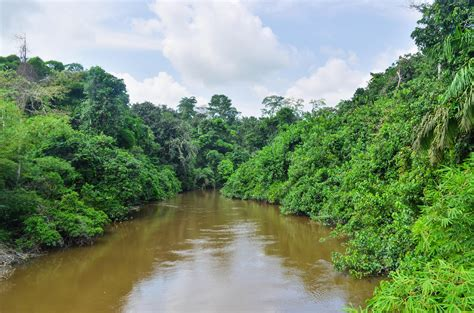 River Of congo river river in africa thousand wonders