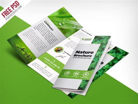 freebie nature tri fold brochure template free psd by