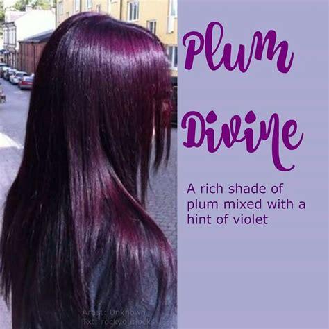 plum black hair color best 25 plum purple hair ideas on plum hair