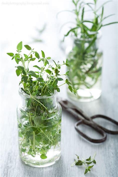 cuisiner les f钁es fraiches bouquet de fines herbes la mini maison