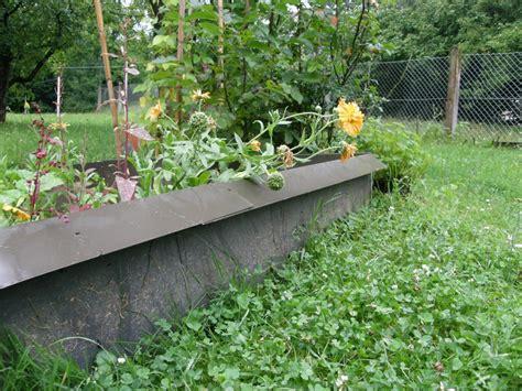 Was Kann Gegen Pilze Im Garten Tun by Was Tun Gegen Nacktschnecken