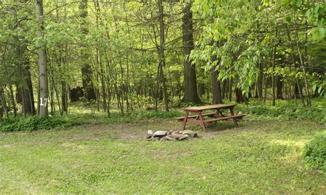 Ricketts Glen Cabins by Rock Mountain Cground Just Minutes From Ricketts