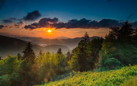 wallpaper usa north carolina mountains trees sunrise