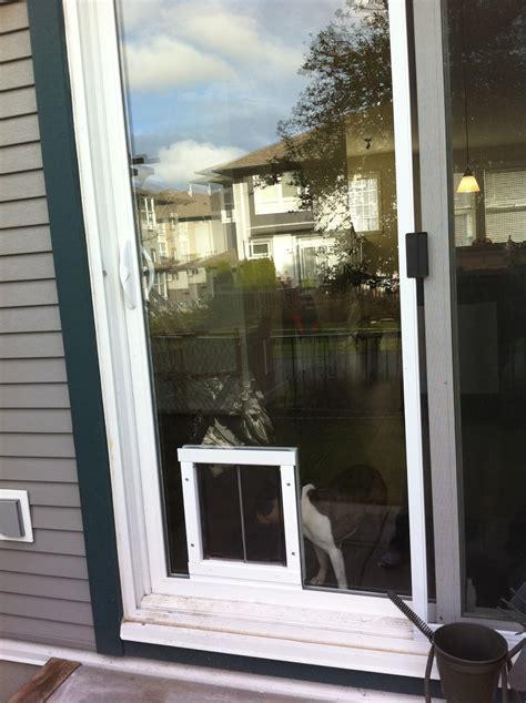 Cat Doors For Sliding Glass Doors Installations And Pics Doors Cat Doors Pet Doors For Sliding Glass Doors