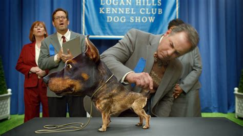 audi commercial super bowl audi s doberhuahua super bowl ad stars a horrifying