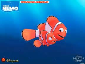 images of from finding nemo iraq and finding nemo katechaplin