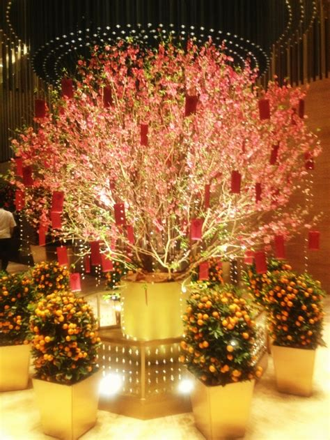 new year plant decorations 17 best images about tet new yr ideas on