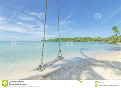 swinging vacations swing hang from coconut palm tree over beach sea in phuket