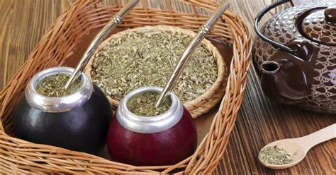 what is matte tea yerba mate tea cancer livestrong