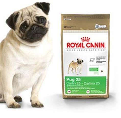 royal canine pug royal canin mini pug food 10 lb bag