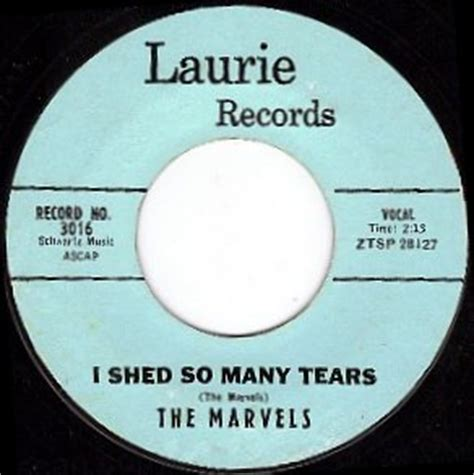 Shed So Many Tears Instrumental by Shed So Many Tears 28 Images Shed So Many Tears Ebook By Rodrick V Bankston Shed So Many