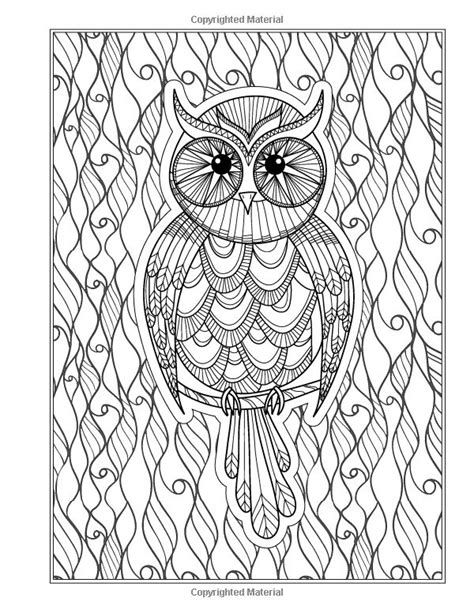 picture book for adults the eclectic owl an coloring book by g t haddix