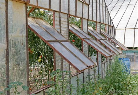 greenhouse windows how do i choose the best greenhouse windows with pictures