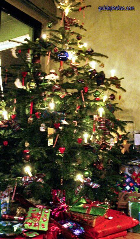der weihnachtsbaum gaidaphotos fotos und bilder