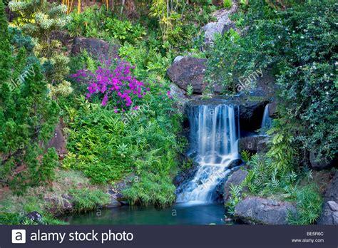 botanical gardens kauai waterfall at na aina botanical gardens kauai hawaii