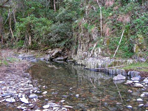 top creek ideas for the garden 171 lookandsee
