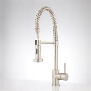 Spring Faucet Kitchen Hardin Single Hole Kitchen Faucet With Pull Down Spring