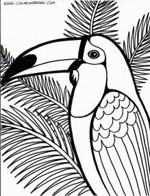 toucan coloring page toucan coloring page coloring home