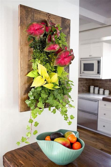 creating a vertical garden for small spaces hipages au