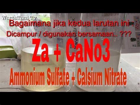 Pupuk Calsium Fertilizer pupuk za nh4 so4 dan calsium nitrate ca no3 2 fertilizer