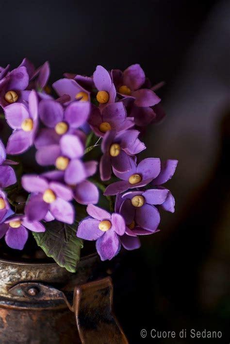 pasta di gomma per fiori oltre 25 fantastiche idee su fiori di pasta di gomma su