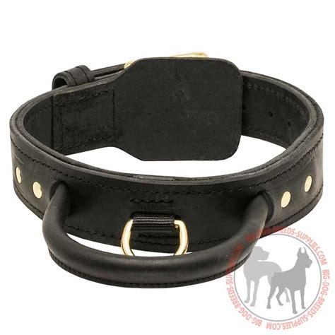 big collars buy 2 ply leather collar corso breed big supplies