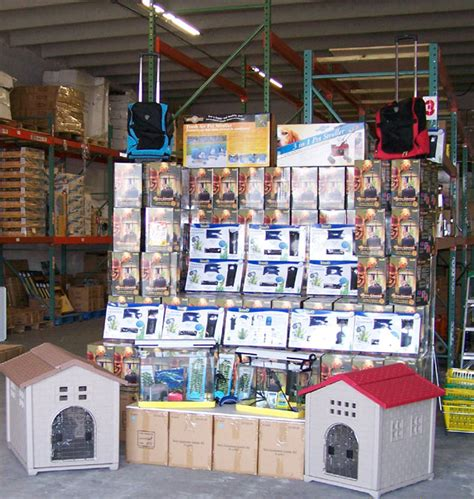 puppy stores in miami pet stores in this area pets world