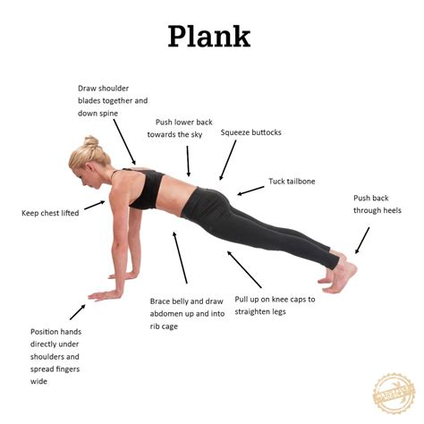 plank images the right way to plank common plank mistakes fitnish