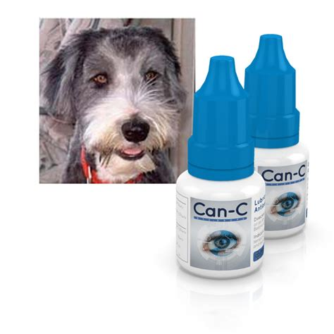 eye drops for dogs can c eye drops safely cataracts in dogs