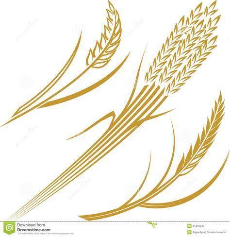 wheat clip grains of wheat clipart clipart suggest