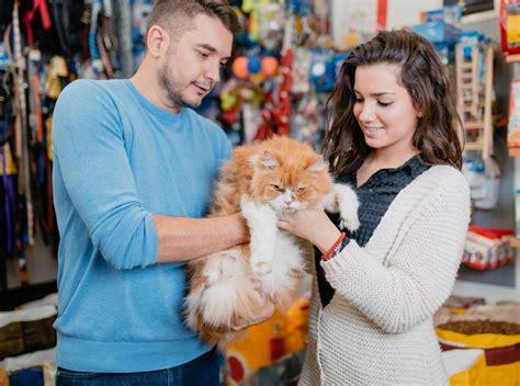 how to run a pet shop business