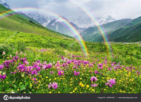fiori di co primaverili arcobaleno e fiori