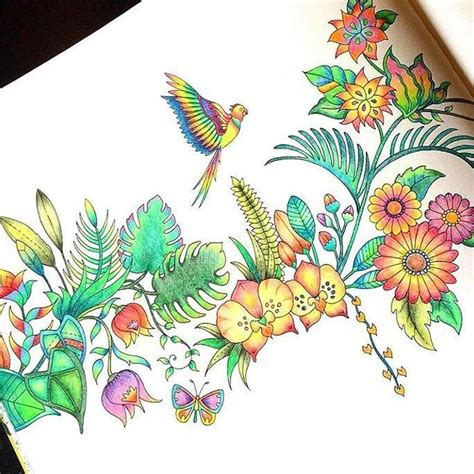 colored pencils coloring books 99 best sweet colored pencils images on